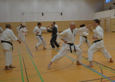 Karate-064-a-1-1024x707